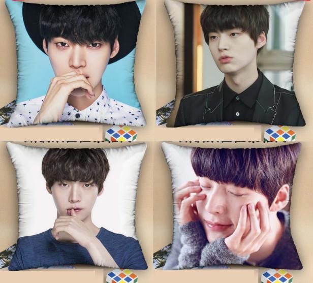 หมอน Ahn Jae Hyun (เลือกลาย)