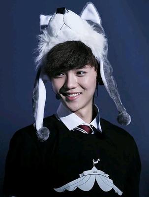 หมวกแฟชั่น EXO LUHAN TAO