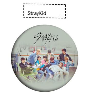 เข็มกลัด Stray Kids