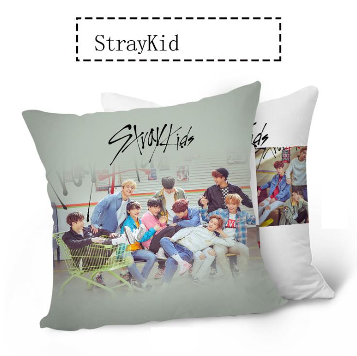 หมอน Stray Kids