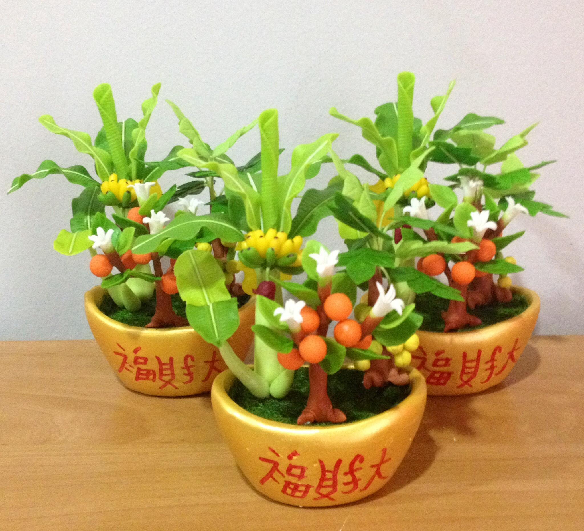 C004-สวนต้นไม้มงคล ไซร์ 3 นิ้ว กล้วย มะยม ส้ม