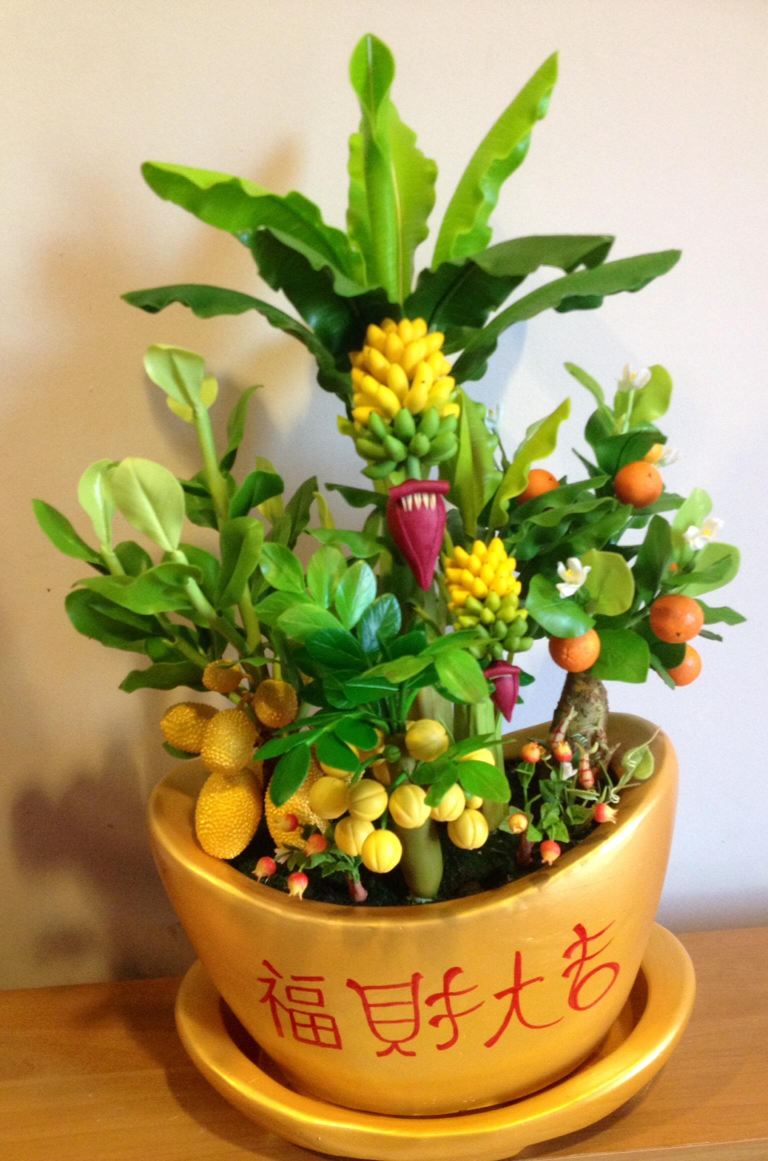 C014-สวนต้นไม้มงคล ส้ม มะยม กล้วย ขนุน 3-12 นิ้ว