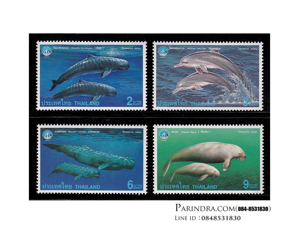 แสตมป์ชุด สัตว์ทะเลเลี้ยงลูกด้วยนม ปีทะเลสากล ปี 2541 (ยังไม่ใช้)