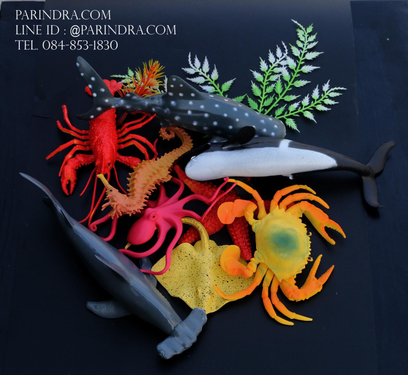 โมเดลสัตว์ทะเล Sea Animal 9 ชนิด