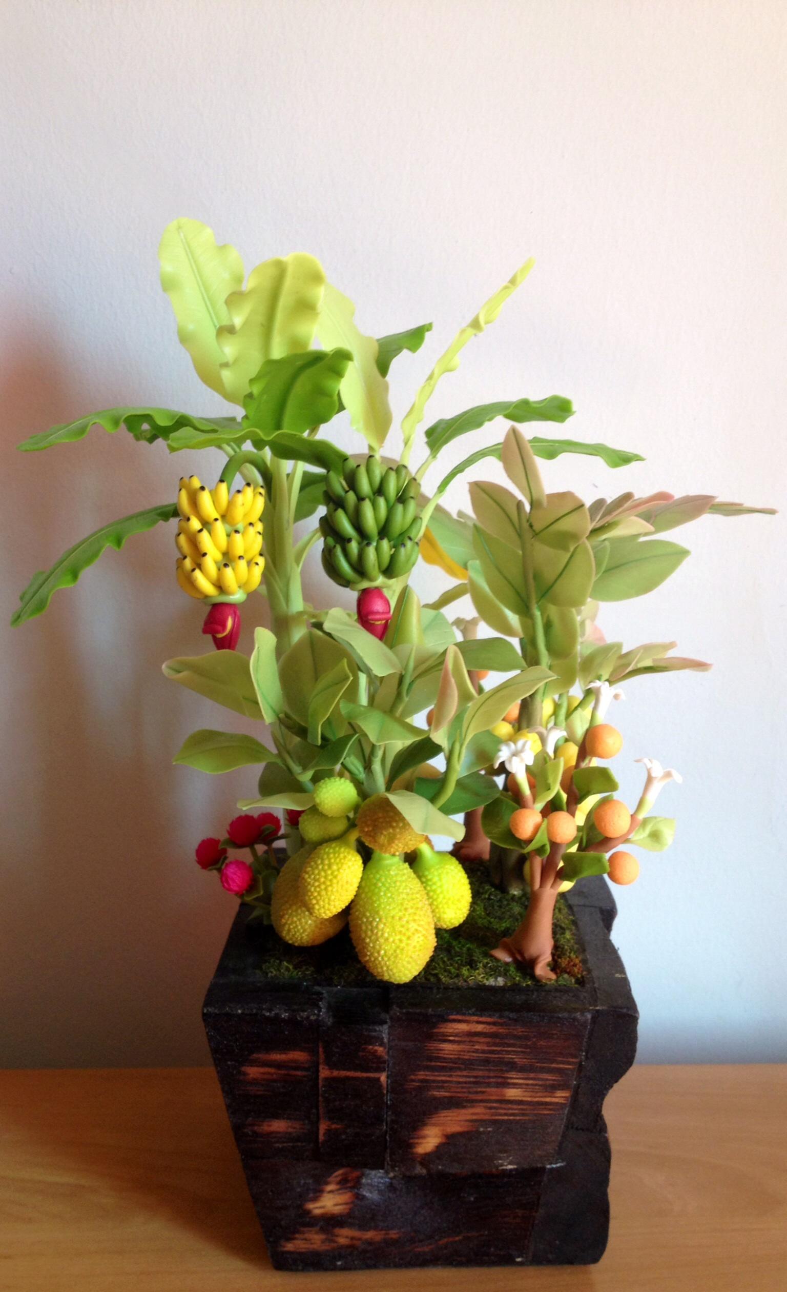 C006-สวนต้นไม้มงคล มะยม ส้ม กล้วย ขนุน_ไซร์ 3-9 นิ้ว