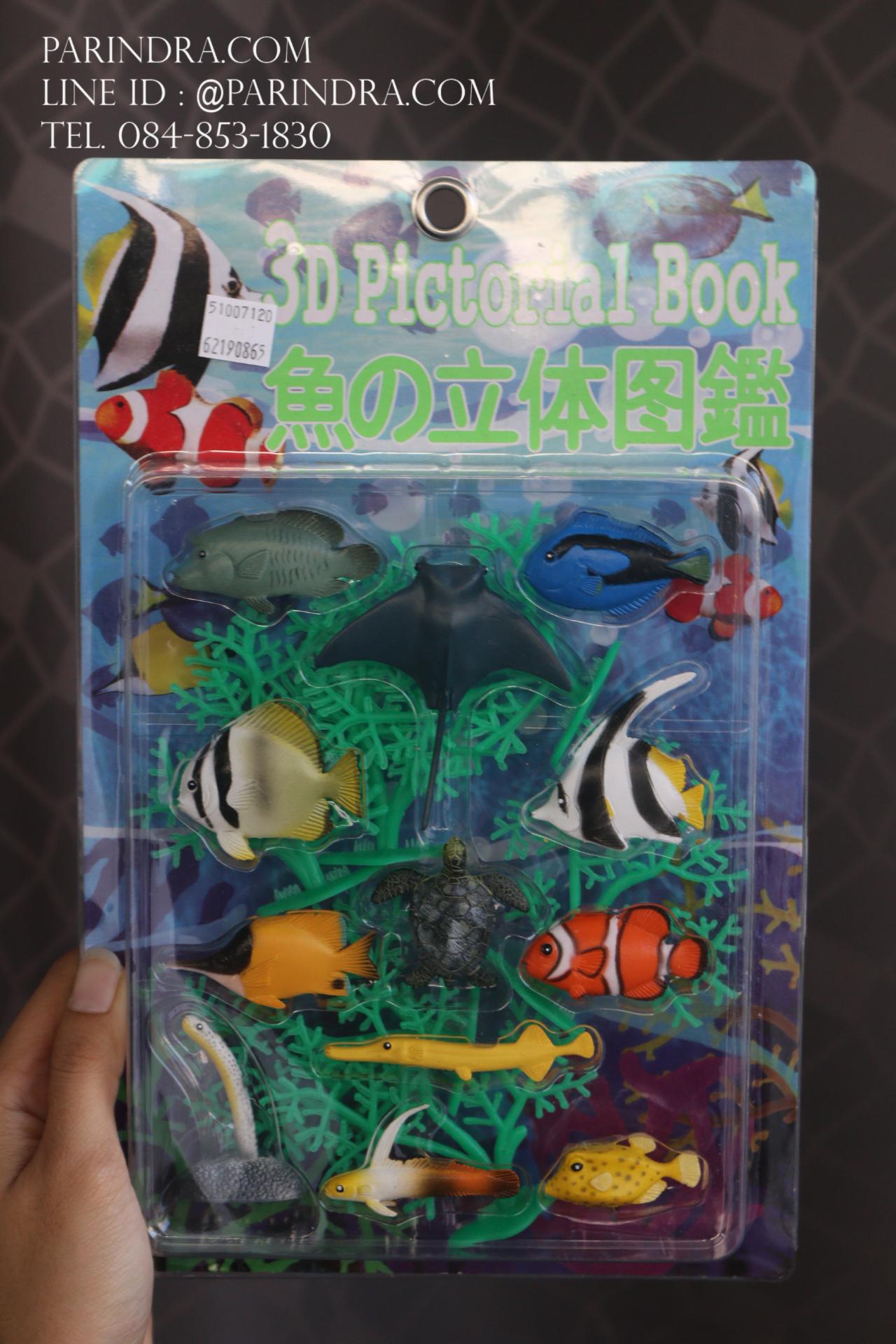 โมเดลสัตว์ปลาทะเล กลุ่มปลาหลากหลายสายพันธุ์