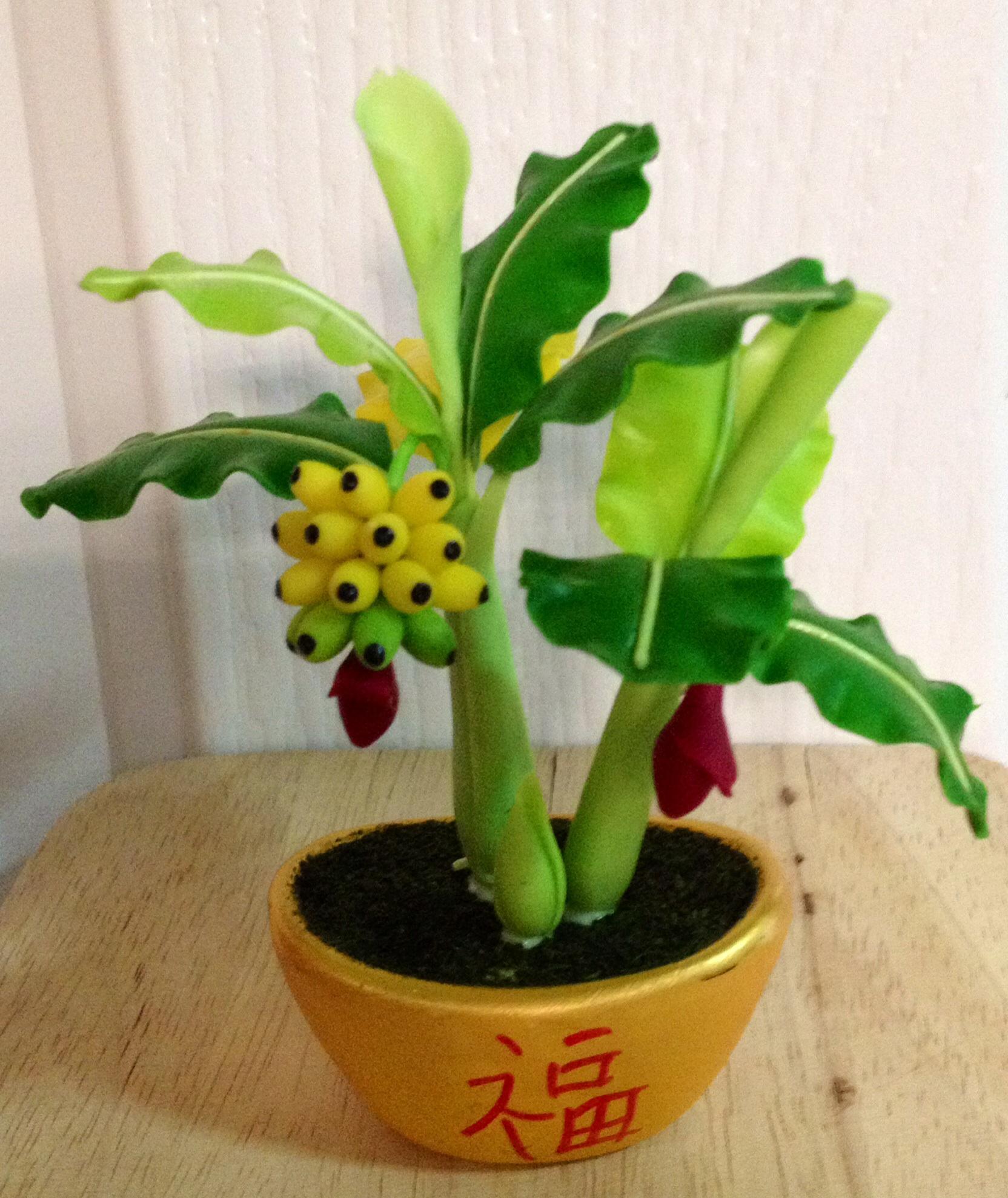 B028-ต้นกล้วย 4 นิ้ว