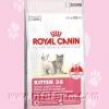 อาหารลูกแมว Royal Canin Kitten-36 (10kg.)