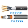 สายไฟ CVV 24X1.5 SQMM Coldair