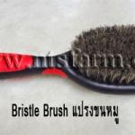 Bristle Brush แปรงขนหมู