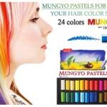 ช็อคเปลี่ยนสีผม MUNGYO พาสเทล สุดจี๊ด สีแรง ดารานิยมใช้ทำผม มี 24 สี