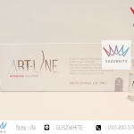 ART-LINE intensive solution