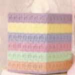 ชุดปักแผ่นเฟรมกล่องทิชชู ลาย Colorful