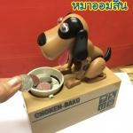 หมาออมสิน หมาโกยเหรียญ หมากินเหรียญ มีคลิป