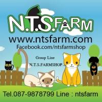 ร้านN.T.S.FARM