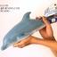 โมเดลปลาโลมา Dolphin แบบยางอ่อนนุ่มนิ่ม ตั้งโชว์สวย ขนาดใหญ่ 16 นิ้ว thumbnail 5