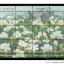 แสตมป์ท่องเที่ยวทั่วไทย-ทุ่งกุหลาบขาว ดอยเชียงดาว จังหวัดเชียงใหม่ ชุด2 ปี 2543 (ยังไม่ใช้) thumbnail 1