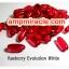 กลูต้า ราสเบอรี่ อิวอลูชั่น ไวท์ Rasberry Evolution White 20000 mg thumbnail 1
