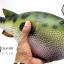 โมเดลปลาปักเป้า PUFFER Fish แบบยางอ่อนนุ่มนิ่ม ตั้งโชว์สวย ขนาดใหญ่ 14 นิ้ว thumbnail 5