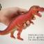 โมเดลไดโนเสาร์ Tyrannosaurus Rex (T-Rex) thumbnail 2