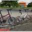 จักรยาน MINI TRINX ล้อ 20 นิ้ว เกียร์ 16 สปีด เฟรมอลูมิเนียม Z4 thumbnail 2