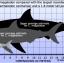 โมเดลจำลอง ฟันฉลามยักษ์เมกกาโลดอน Megalodon ขนาด 6 นิ้ว พร้อมฐานวาง #MGT006 thumbnail 17