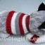 ตุ๊กตาน้องหมาไซบีเรียนฮัสกี้ ใส่เสื้อสเวตเตอร์สุดหรู thumbnail 4