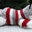 ตุ๊กตาน้องหมาไซบีเรียนฮัสกี้ ใส่เสื้อสเวตเตอร์สุดหรู thumbnail 3