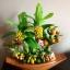C003-สวนต้นไม้มงคล มะยม ส้ม ขนุน กล้วย_ไซร์ 4-6 นิ้ว thumbnail 4
