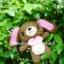 ตุ๊กตาถัก Sugar กระต่ายหูยาว thumbnail 3