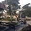 แร็คจักรยาน บนหลังคา SBT Roof Rack สำหรับรถเก๋ง ใส่จักรยานได้ 3 คัน สีดำ thumbnail 8