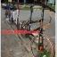 จักรยาน MINI TRINX ล้อ 20 นิ้ว เกียร์ 16 สปีด เฟรมอลูมิเนียม Z4 thumbnail 36