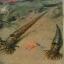 ฟอสซิล Nautiloid ออโทเซอรัส (Orthoceras sp.) - จาก Morocco #OT004 thumbnail 10