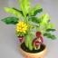 B031-ต้นกล้วย 7 นิ้ว ( รวมกระถาง) thumbnail 3