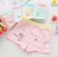 กางเกงในเด็ก คละสี แพ็ค 20 ตัว ไซส์ S (อายุ 2 ปี) thumbnail 1