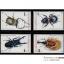 แสตมป์ชุด แมลง (ชุด2) ปี 2544 (ยังไม่ใช้) thumbnail 1