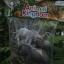 โมเดลสัตว์ชุดโขลงช้าง thumbnail 3