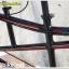 จักรยานสองตอน TrinX Tandembike เฟรมอลู 21 สปีด 2015(ไม่แถมตะแกรง),M286V thumbnail 9