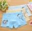 กางเกงในเด็ก คละสี แพ็ค 20 ตัว ไซส์ XL thumbnail 1