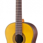 Walden Guitar N660
