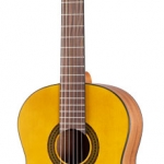 Walden Guitar N550