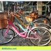 จักรยานแม่บ้าน Coyote EMME (เอ็มมี่) ล้อ 24 นิ้ว พร้อมตะกร้าหน้า
