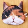 [พร้อมส่ง] กระเป๋าใส่เหรียญหน้าแมว 3D ส่งฟรี EMS