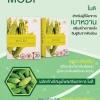 MODI (โมดิ) สารสกัดจากมะระขี้นก เสริมสร้างการหลั่งอินซูลินจากตับอ่อน