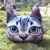 [พร้อมส่ง] หมอนแมว 3D (40x50 cm.) ส่งฟรี EMS