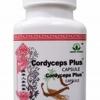 สมุนไพรถังเฉ่า โสมจีน บำรุงร่างกาย Cordyceps Plus Capsule