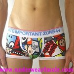 4+ Private Importtant Zone Men Underwear  Cartoon Retro Vintage The Product Bros Trunk