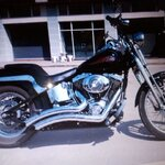 Softail springer ปี 2004