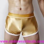 Super Body Men Underwear  Low Waist Boxer Shorts (Gold)
