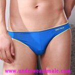 GMW Men Underwear Super Sexy Charming Comfortable Brief (Blue)